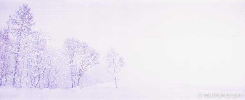 Niseko blizzard