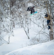 Connor Harding dodging branches while he gets close to check out the Niseko tree-living wildlife (Heath Patterson).