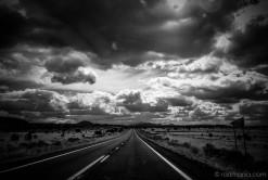 Radich Arizona road