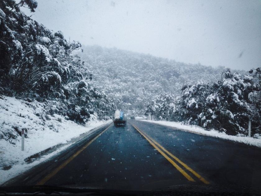 Alpine Way snowfall - Sean Radich